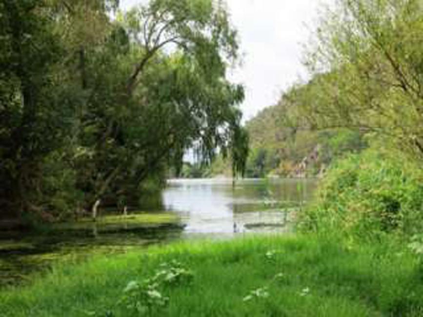 Sailing Miravet river